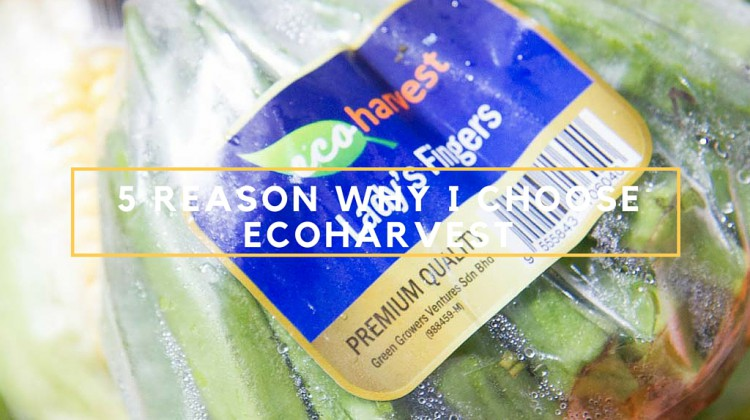 ECOHARVEST: 5 REASONS WHY I BUY ECOHARVEST VEGETABLES