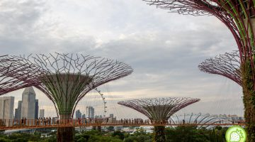 Singapore : Not just a Concrete City